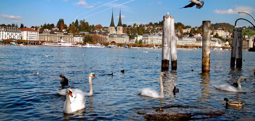 Schweizerhofquai2_Lake.jpg